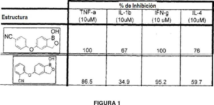 Pequeñas moléculas que contienen boro como agentes antiinflamatorios.