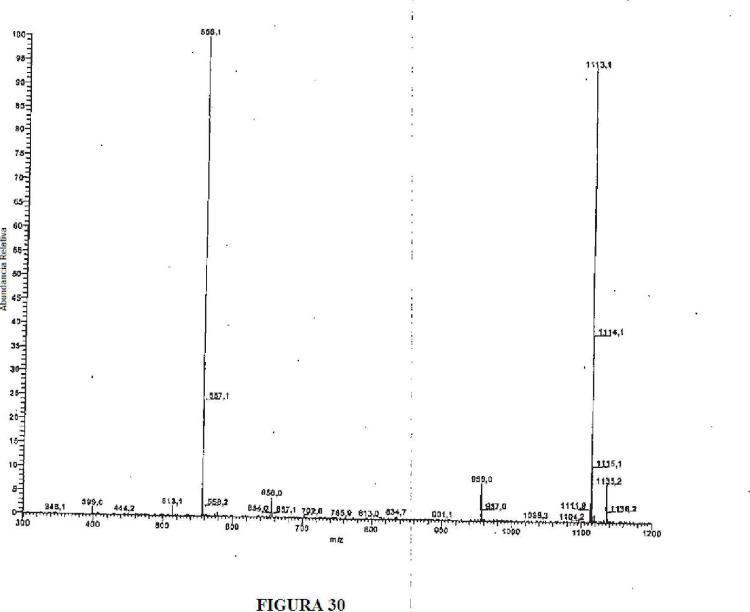 Análogos de oligonucleótidos que incorporan 5-aza-citosina en los mismos.