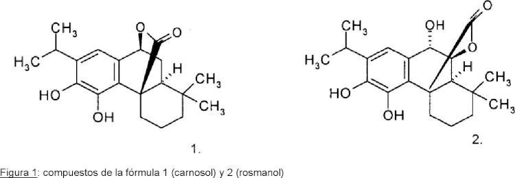 Uso de composiciones que contienen carnosol y/o rosmanol.