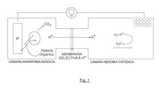 Sistema bioelectroquímico para depurar aguas residuales con cátodo de esferas conductoras flotantes.
