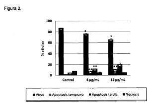 Procedimiento de obtención de extractos de hojas de Corema album y su aplicación terapéutica.