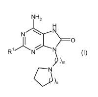 Derivados de purina para su uso en el tratamiento de enfermedades alérgicas, inflamatorias e infecciosas.