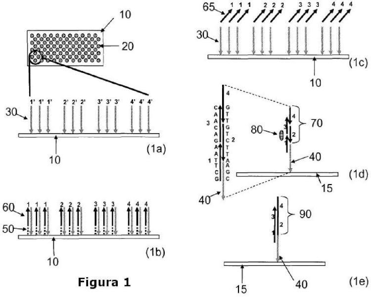 Métodos y dispositivos para la síntesis de ácidos nucleicos.