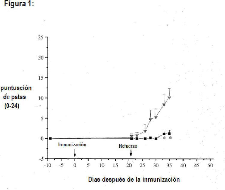 Composiciones y métodos de uso para anticuerpos terapéuticos.