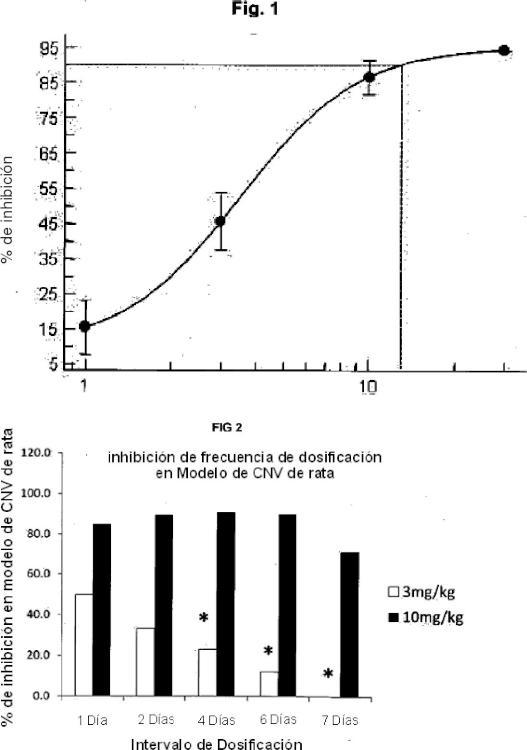 Regímenes de dosificación para el tratamiento de enfermedad vascular ocular.