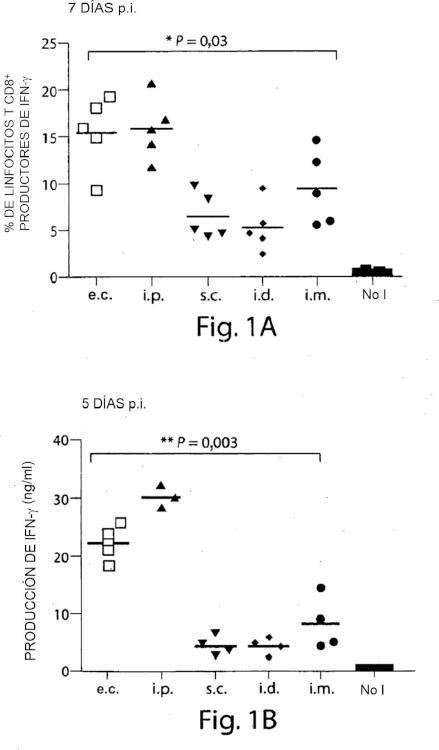 Vacunación con vectores poxvirales mediante alteración mecánica epidérmica.
