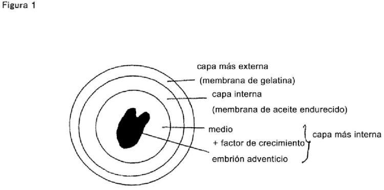 Cápsulas que contienen células o tejidos vivos.