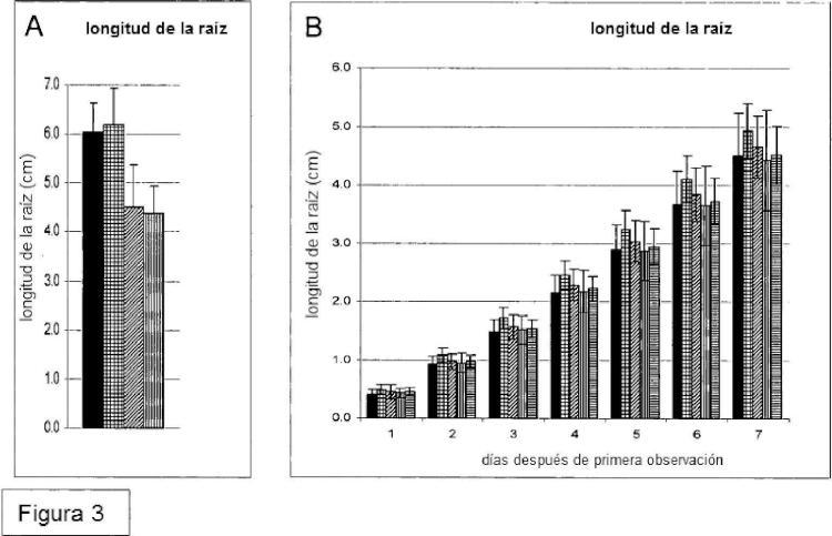 Métodos para alterar la reactividad de las paredes celulares vegetales.