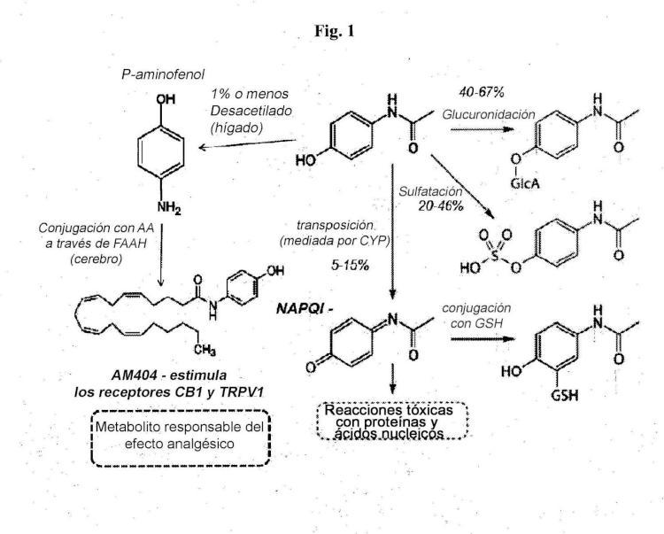 Análogos de ácido araquidónico y métodos para tratamiento analgésico usando el mismo.
