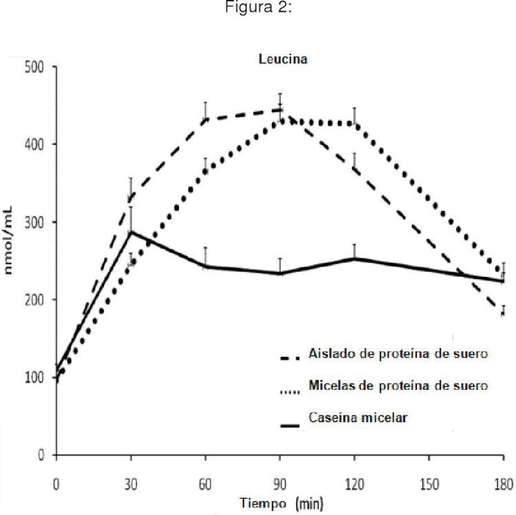 Micelas de proteína de suero para aumentar la masa muscular y el rendimiento.