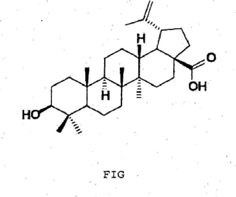 Procedimiento para la preparación de una solución acuosa que contiene ácidos triterpénicos, una solución acuosa que contiene ácidos triterpénicos y su utilización.