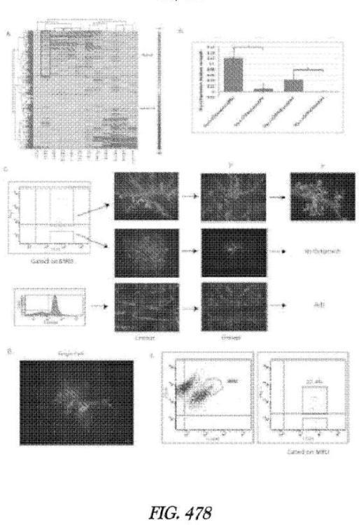Métodos y sistemas para el análisis de células individuales.