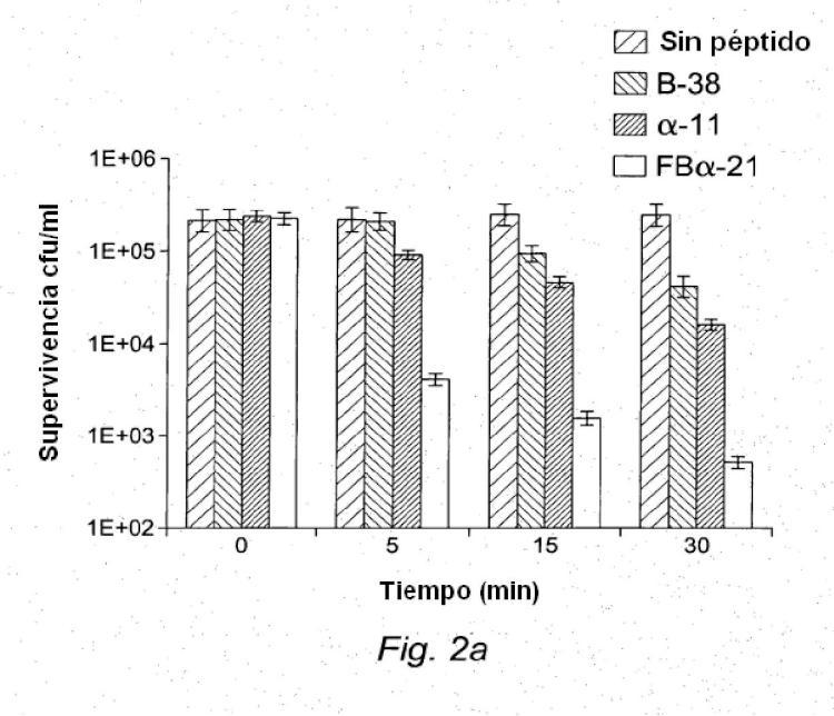Nuevos péptidos antimicrobianos.