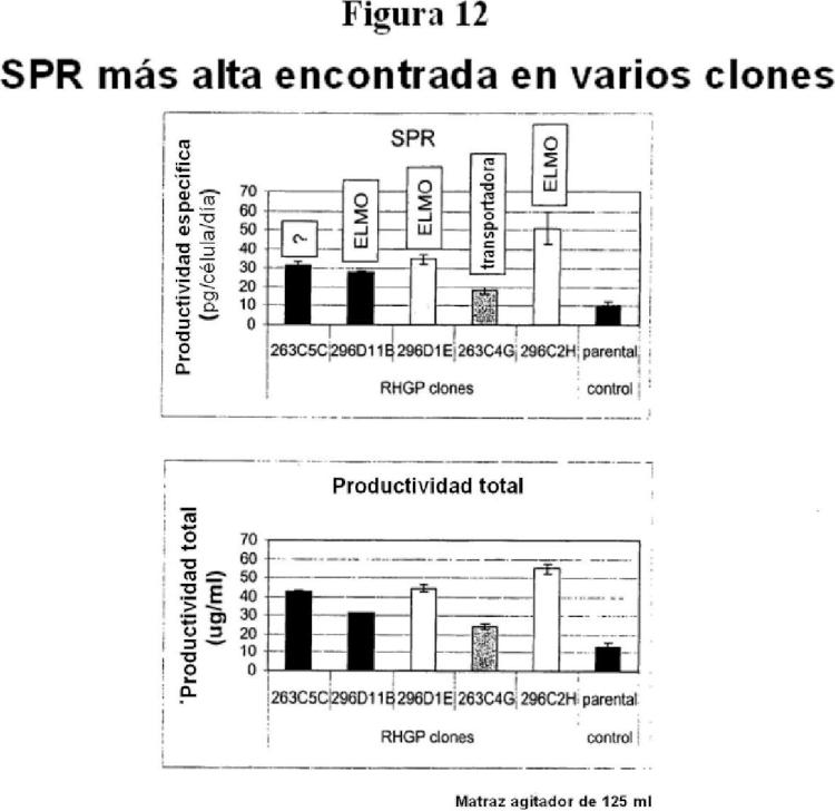Perturbación genética homocigota aleatoria para mejorar la producción de anticuerpos.