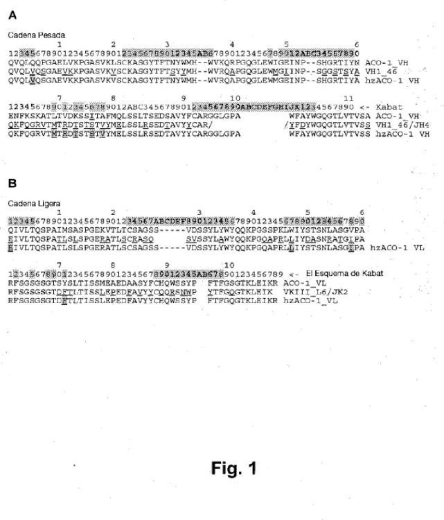 Anticuerpos humanizados contra interferón alfa humano.
