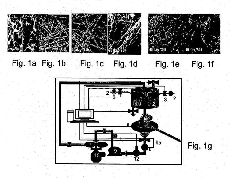 Métodos de expansión de células y usos de células y de medios de acondicionamiento producidos por los mismos para terapia.