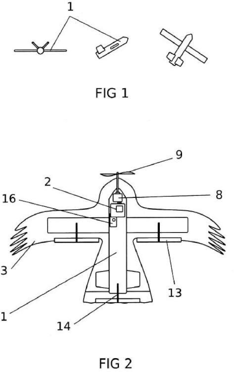Aeromodelo radio controlado configurado como un ave rapaz para control aviar.
