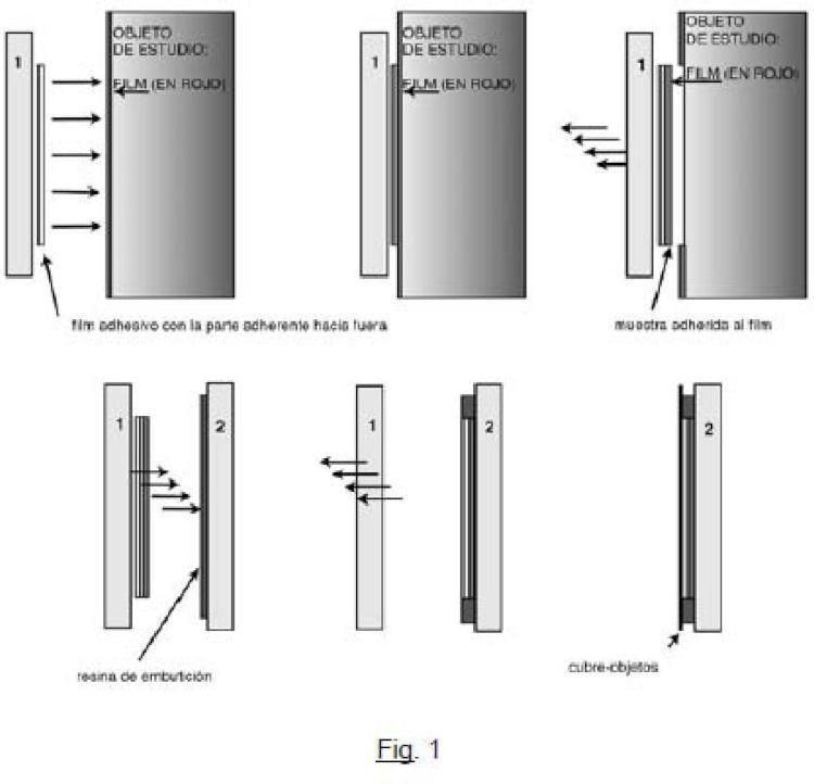 Procedimiento para el aislamiento y estudio de la capa superficial de un material mineral por embutición.