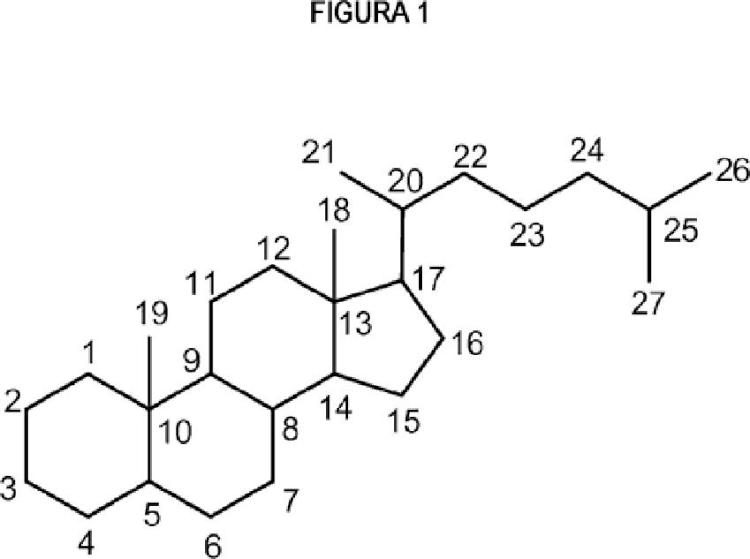 Preparación de ácido biliar sintético.