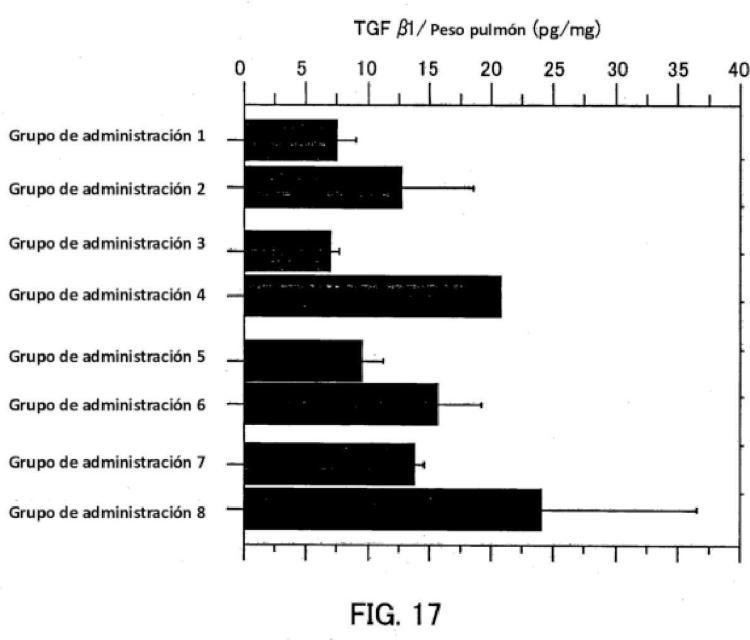 Molécula de ácido nucleico monocatenario para controlar la expresión génica.