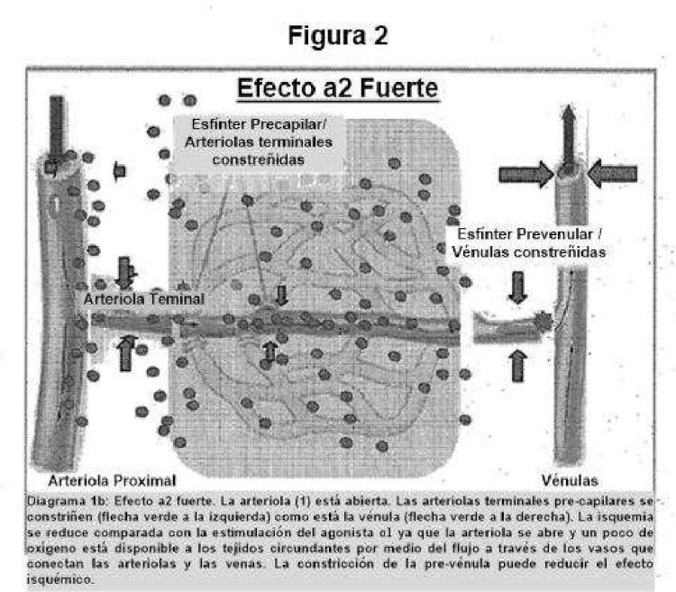 Ilustración 2 de la Galería de ilustraciones de Composiciones y métodos para el blanqueamiento del ojo