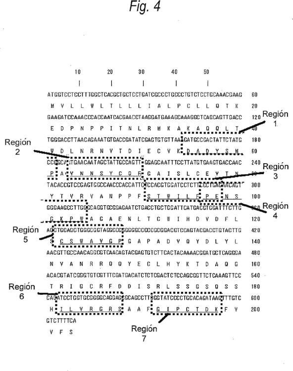 Anticuerpo anti-IL-3Ralfa para su utilización en el tratamiento de un tumor de la sangre.