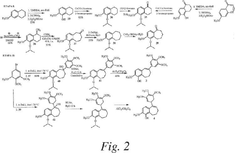 Análogos de combretastatina con actividad de unión a tubulina.