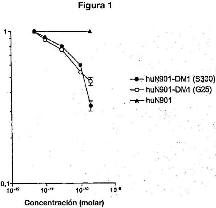 Métodos para la preparación de conjugados citotóxicos de maitansinoides y agentes que se fijan a las células.