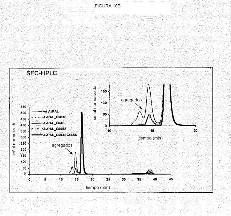 Composiciones de fenilalanina amoníaco-liasa procariótica y métodos de uso de dichas composiciones.