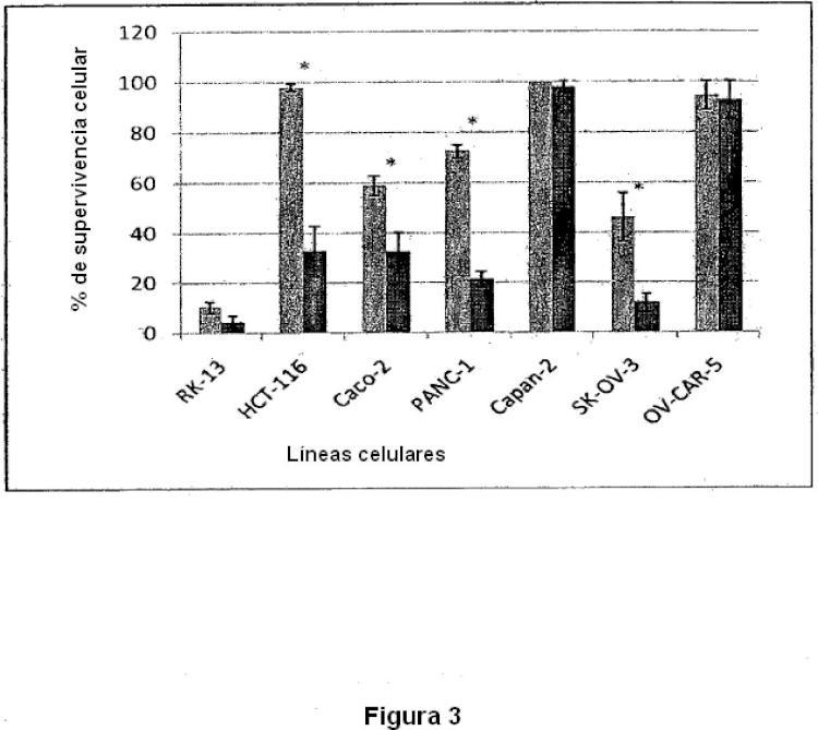 Cepa atenuada de Myxoma virus para la utilización como medicamento oncolítico.