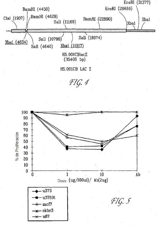 Ilustración 3 de la Galería de ilustraciones de Composiciones y métodos de tratamiento de tumores