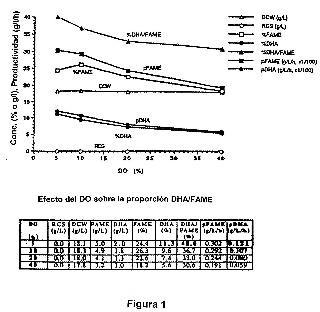 Producción aumentada de lípidos que contienen ácidos grasos polienoicos mediante cultivos de alta densidad de microbios eucariotas en fermentadores.