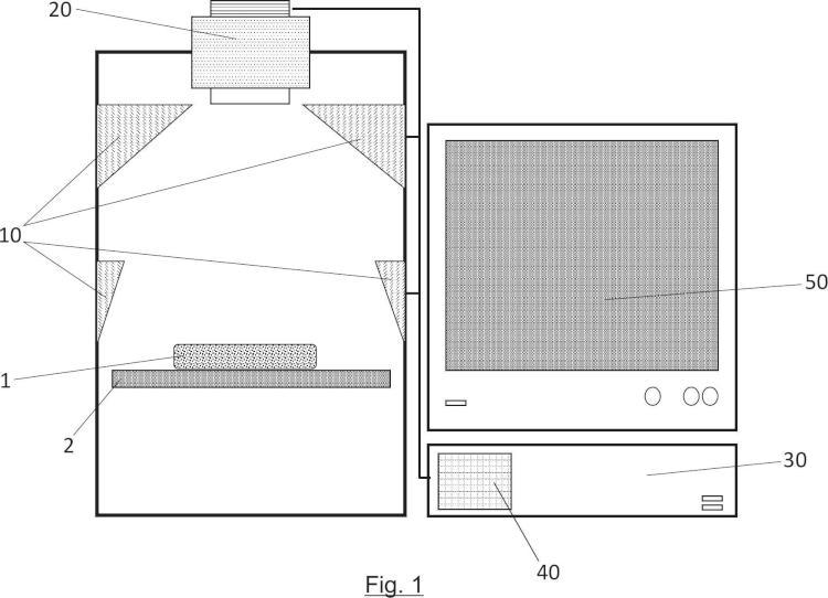 Sistema y método de detección de parásitos Anisakis en filetes de pescado.
