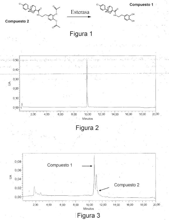 Profármacos inhibidores de la esfingosina cinasa.