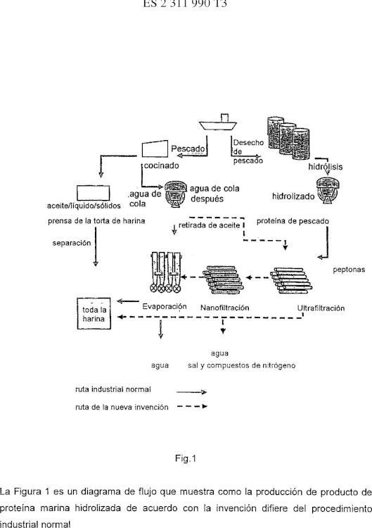 Producto de proteína marina hidrolizada, proceso para la producción del mismo, y aplicación.