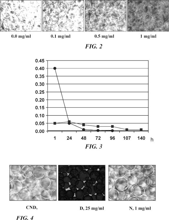Composición farmacéutica de una antraciclina.