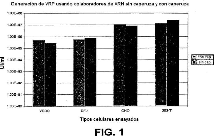 Partículas alfavíricas y métodos de preparación.