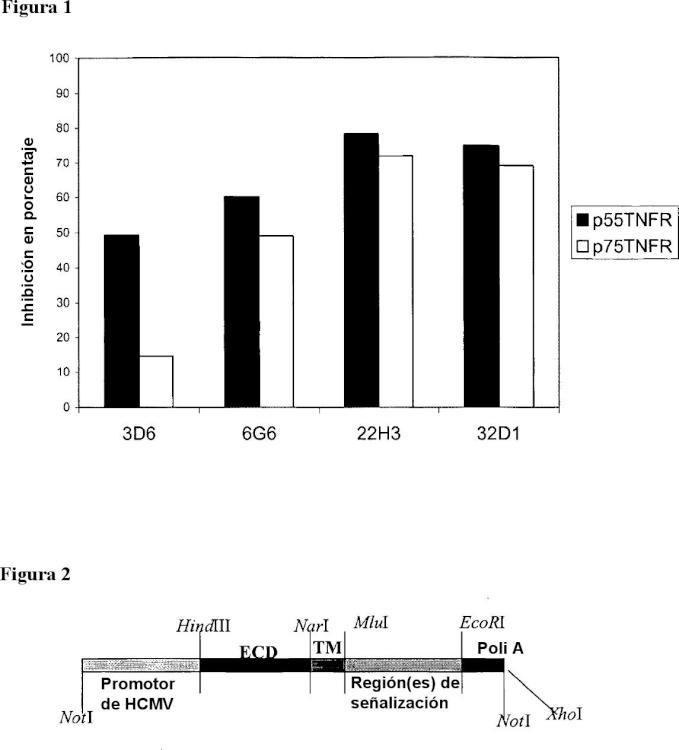 Anticuerpos anti-TNF alfa que inhiben de manera selectiva la señalización de TNF alfa por medio del p55R.