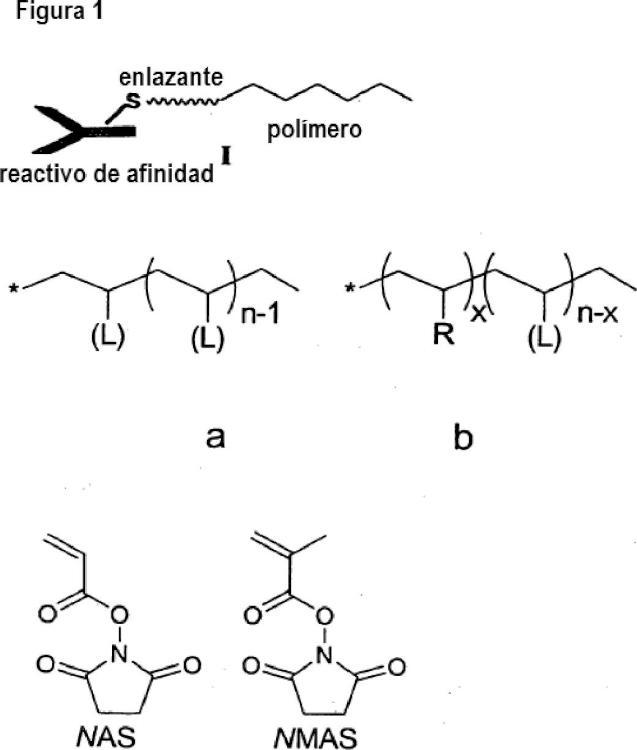 Marcadores elementales de cadena principal polimérica.