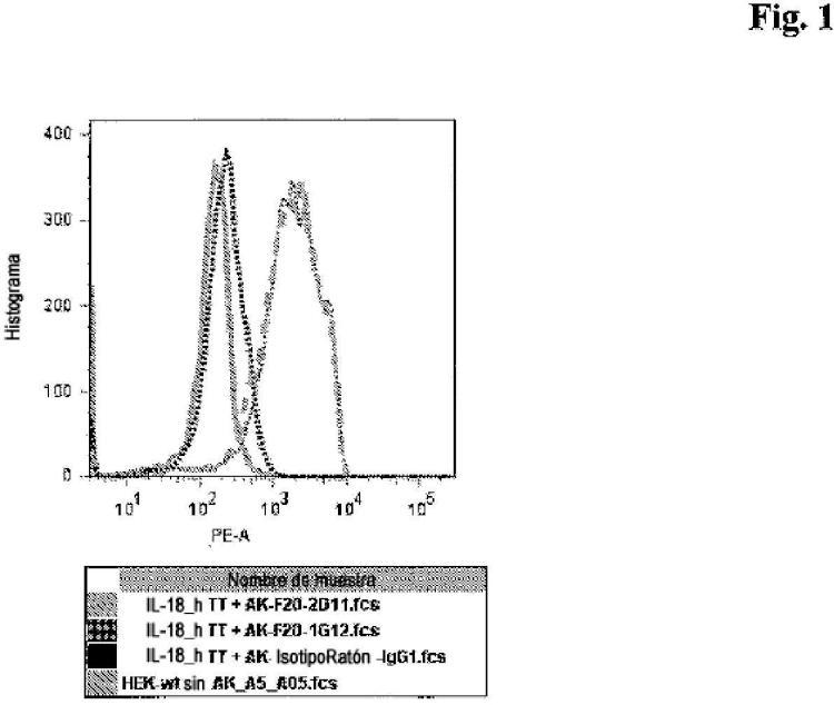Anticuerpos contra la IL-18R1 y usos de los mismos.