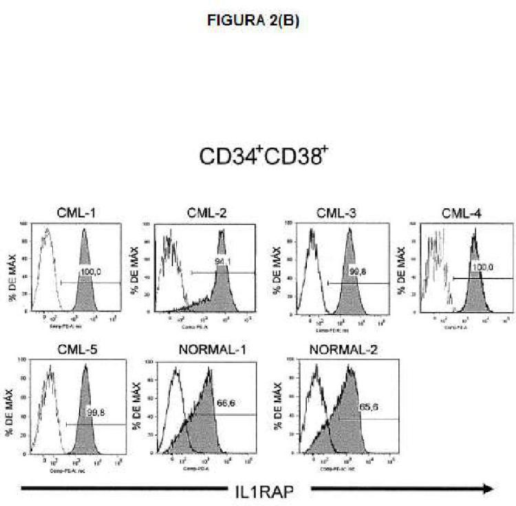 Ilustración 3 de la Galería de ilustraciones de Expresión de IL1RAP en células de leucemia mieloide aguda y crónica