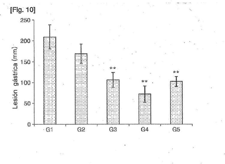 Composición que comprende S-alil-L-cisteína como principio activo para prevenir o tratar lesiones de la mucosa gástrica inducidas por fármacos.