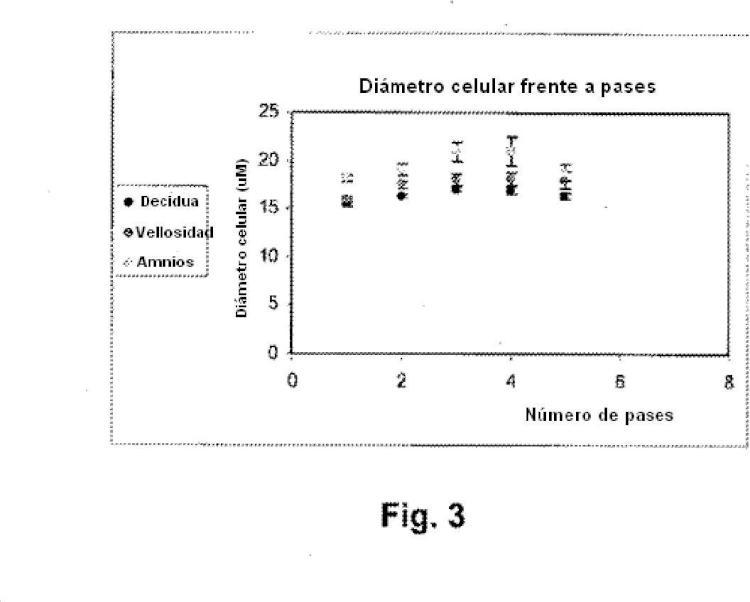 Ilustración 3 de la Galería de ilustraciones de Células adherentes de la placenta y uso de las mismas en el tratamiento de enfermedad
