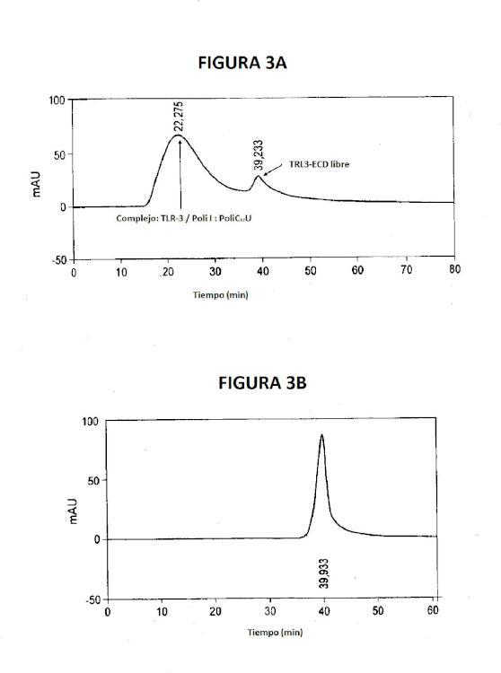 Ilustración 3 de la Galería de ilustraciones de Ácidos ribonucleicos de doble cadena con estructura fisicoquímica robusta y actividad biológica muy específica