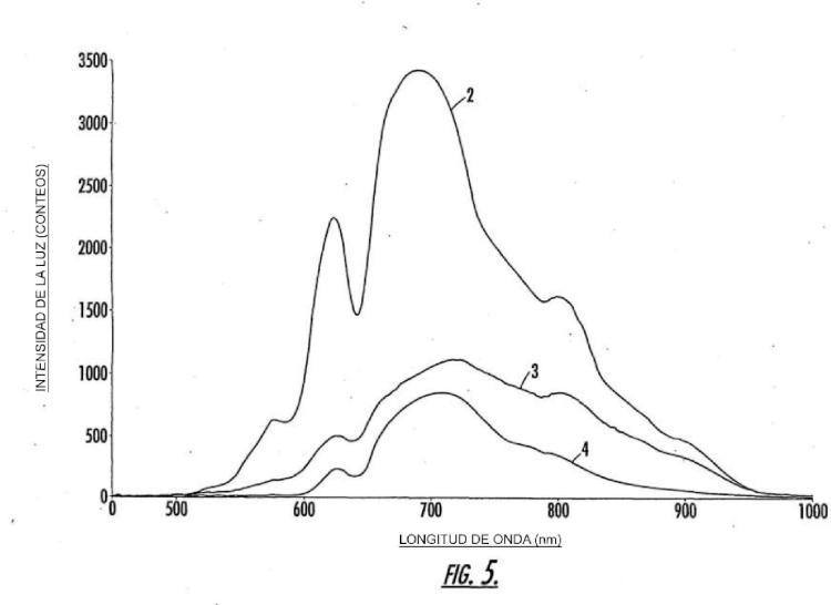 Ilustración 3 de la Galería de ilustraciones de Sistema de procesamiento y procedimientos de identificación de huevos que tienen una característica