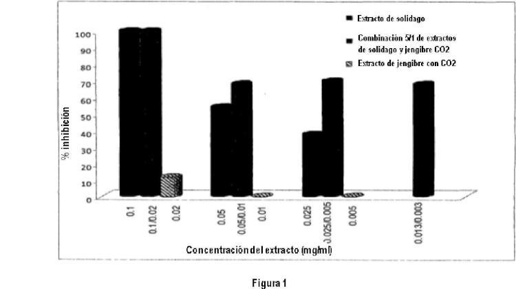 Composiciones herbicidas que comprenden jengibre y solidago para el tratamiento de infección por gripe.