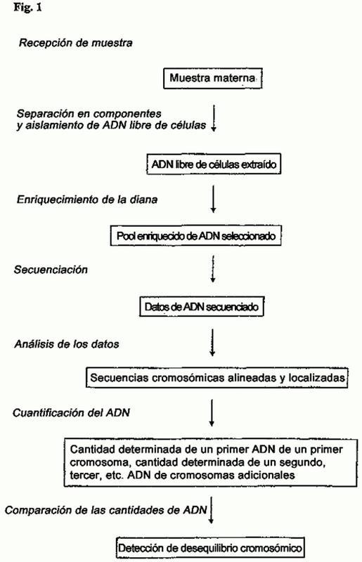 Medios y métodos para el diagnóstico no invasivo de la aneuploidía cromosómica.