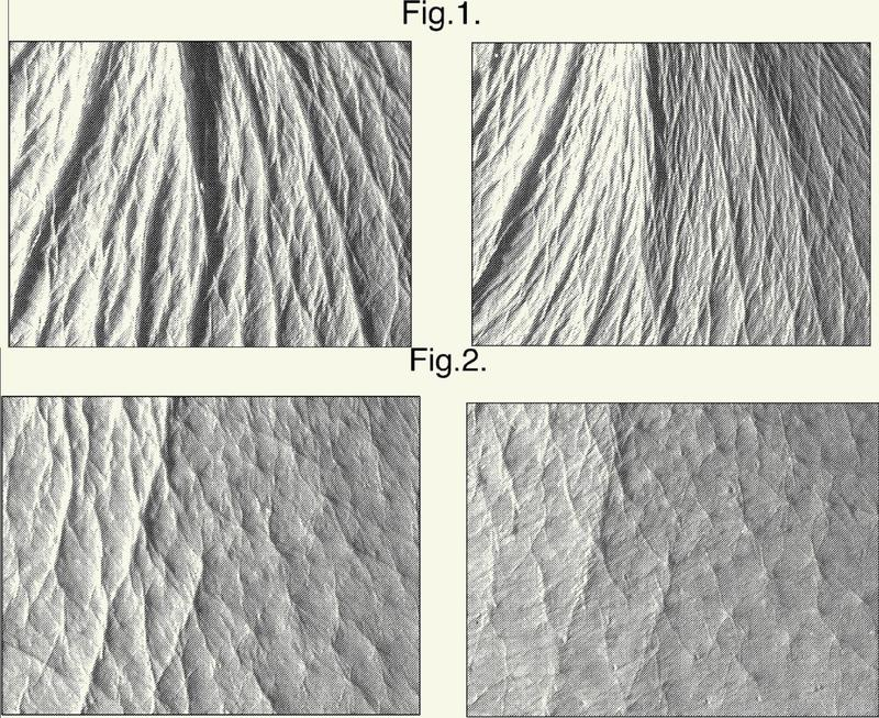 Composición oral con un efecto antienvejecimiento sobre la piel.