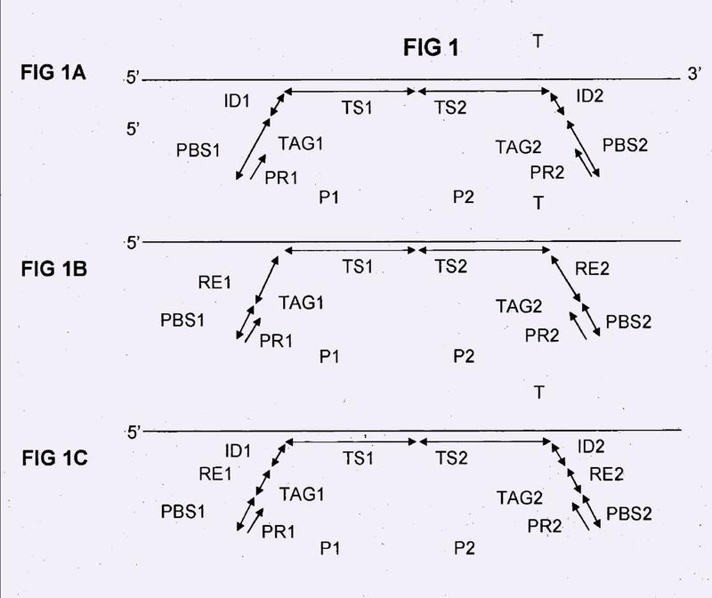 Genotipado a base de secuencias en base a ensayos de ligación a oligonucleótidos.