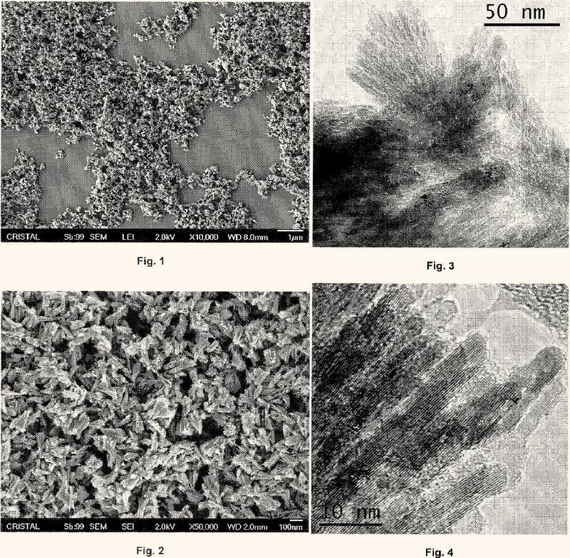 Nanopartículas de dióxido de titanio rutilo y agregados aciculares ordenados de las mismas.